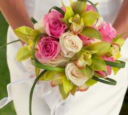 Kona Wood Wedding Rings